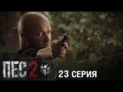 Сериал Пес - 2 сезон - 23 серия - ПРЕМЬЕРА (видео)