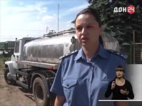 Россельхознадзор проверил молочную ферму в Ростовской области.