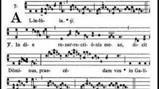 (Liber Usualis, pp. 809-810) I am hoping this will be of particular help to choirs who have the great privilege of singing Gregorian...