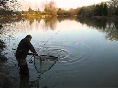 Tips on Carp Care, May 2012