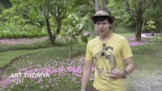 Beautiful Nature @Botanic Garden, Chiangmai