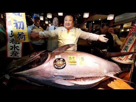 Τόκυο: 600.000 δολάρια έδωσε ιδιοκτήτης εστιατορίου για ένα μπλε τόνο Ειρηνικού