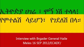 Interview With Birgader General Haile Meles 16 SEP 2012