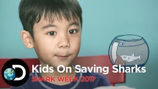 Our little #sharkiddies interview Shark Conservationist, Kathy Xu, as they share their love for these amazing but often...