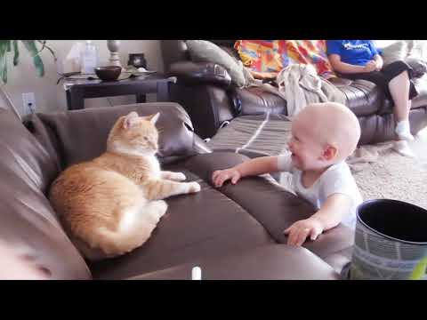 Baby And Cat Fun And Cute #5 - Funny Baby Videos