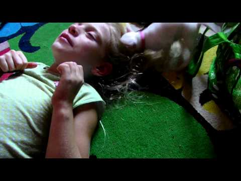 Chihuahua Puppies Attack 7 year old kid!!! Hilarious!
