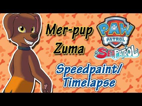Dibujos de amor - Paw Patrol - Mer-pup Zuma (Speedpaint/ Timelapse)