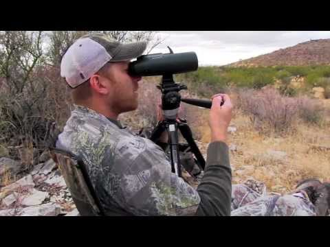 Hunting Coues Deer / Coues Whitetail Deer Hunting