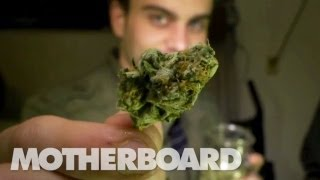 The Future of Weed: HIGH COUNTRY (Trailer)