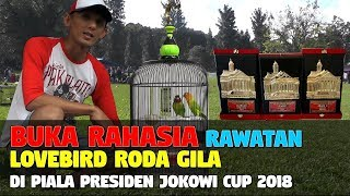 Video BUKA RAHASIA RAWATAN LB RODA GILA DI PIALA PRESIDEN JOKOWI CUP 2018 MP3, 3GP, MP4, WEBM, AVI, FLV Desember 2018