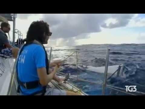 diciannovenne inventa sistema per ripulire gli oceani dalla plastica!