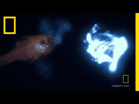 bio luminescence - Expedition Week: Hunt for the Giant Squid : MON NOV 8 9p et/pt : http://channel.nationalgeographic.com/channel/ For the first time ever, the starlight camera...