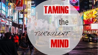 Taming the Turbulent Mind