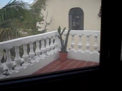 Video Beachouse Dive Hostel Cozumelsta