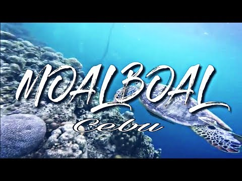 MOALBOAL Cebu (Sardines adverture)