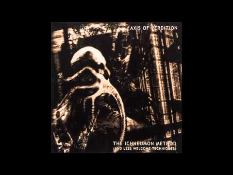 The Axis of Perdition - To Walk the Corridors of Hell
