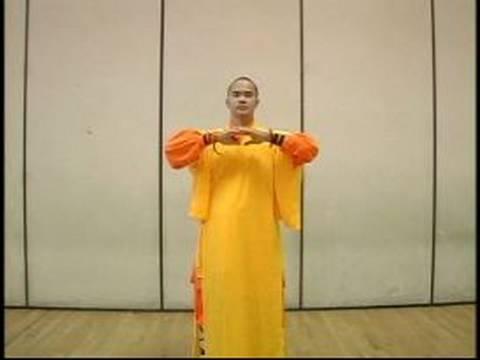 Meditative Exercises of Shaolin Martial Arts : Baduanjin Qigong Exercises 1 & 2