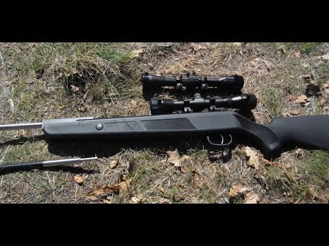 Beeman Dual Caliber Air Rifle - How to Easily Site in Both Barrels
