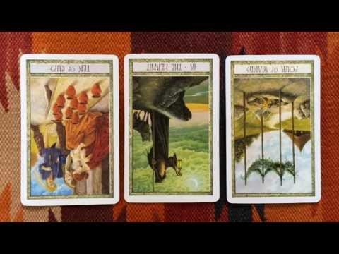 numerology reading - http://www.gregoryscott.com Free tarot and numerology reading using the Druid Craft tarot deck for 18 October 2014. There may be some family conflict, but it won't be about the superficial...