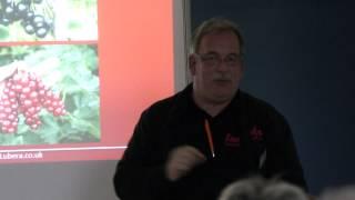 #782 Tipps und Tricks zu Stachelbeeren und Johannisbeeren - Easy Gardening Teil 21 von 35