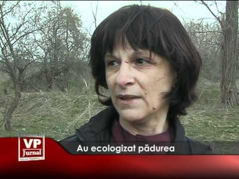 Au ecologizat pădurea