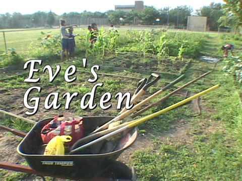 History of Eve's Garden