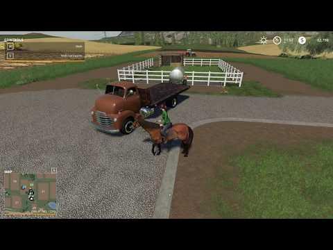 Small horse paddock v1.0.0.0