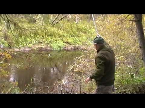 ловля форели спиннингом в ручьях
