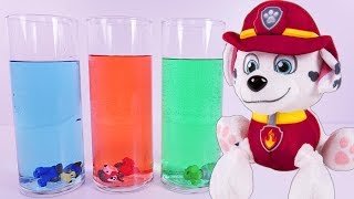 Video PAW PATROL Science Experiment Learning COLORS - Paw Patrol Full Episodes MP3, 3GP, MP4, WEBM, AVI, FLV Juni 2017