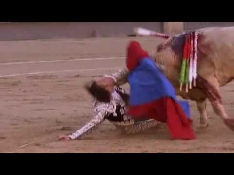 Toro vs Matador