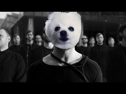 Video Imagine Doggos - Thunder download in MP3, 3GP, MP4, WEBM, AVI, FLV January 2017