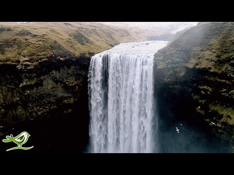 Relaxing Music video for Stres …