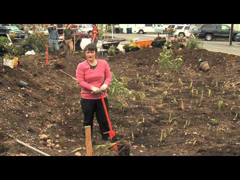 garden video - Building a Rain Garden: Keeping Our Pacific Northwest Waters Clean. In this 32-minute video, you'll learn the important steps to follow to site, design, cons...