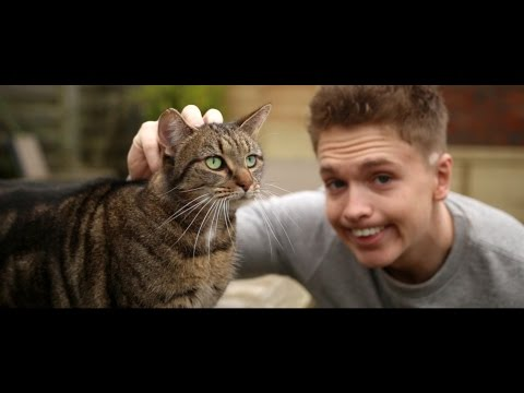 Joe Weller - Kitty (Music Video) (видео)
