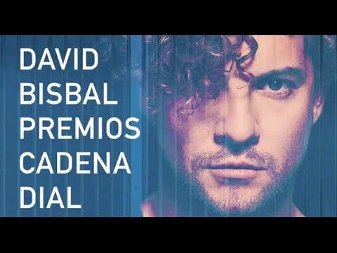 David Bisbal - Premios Cadena Dial 2014