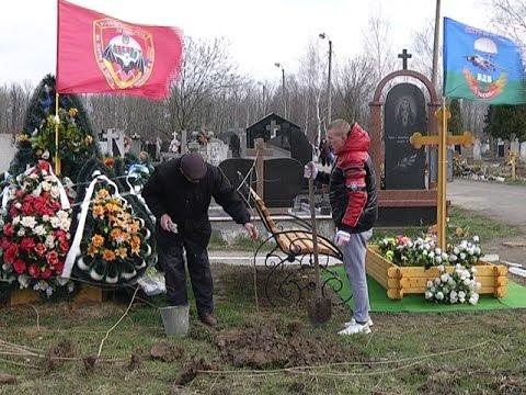 У Коломиї на могилах загиблих героїв посадили кущі калини