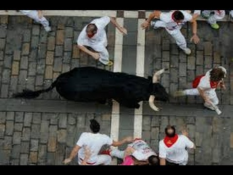 'Running of the Bulls' Ends in Gore and Injuries