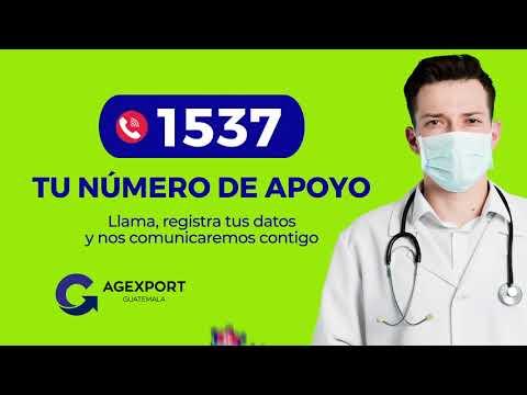 Tu número de apoyo 1537