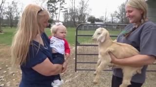 Mama z córeczką podchodzą do młodej kozy! Gdy usłyszysz rozmowę tych maluchów to padniesz!
