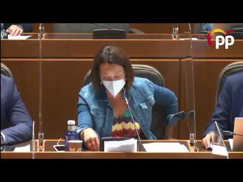 Susín urge al Gobierno de Aragón a cumplir el plazo legal de pago de facturas