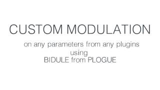 Custom Modulation Tools using BIDULE