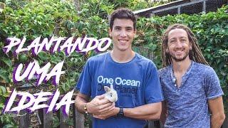 PLANTANDO UMA IDEIA // PLANTING AN IDEA