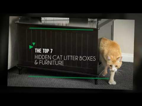 7 Best Cat Litter Boxes Furniture 2017