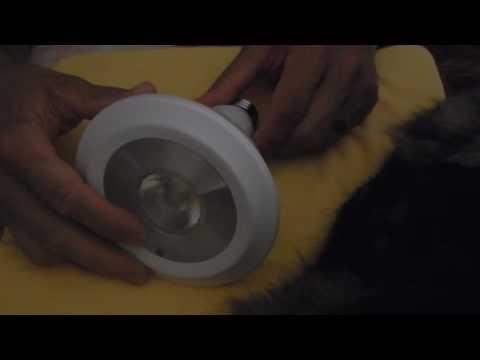 PAR38 Led Bulb,Flood Light Bulb