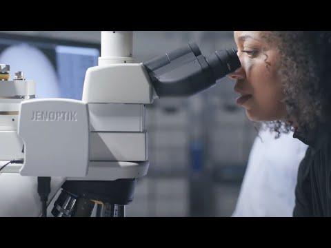 AR Mikroskop für KI-Krebserkennung