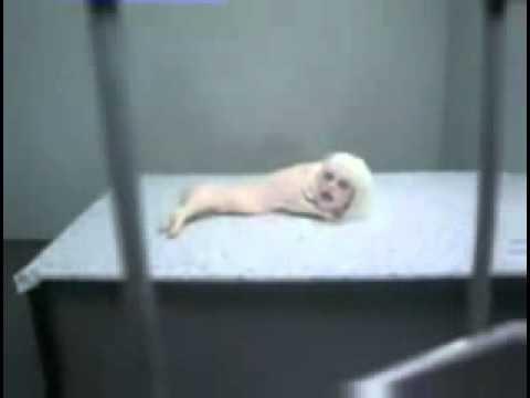 Mutaciones geneticas humanas videos videos relacionados con mutaciones geneticas humanas - Animales con personas apareandose ...