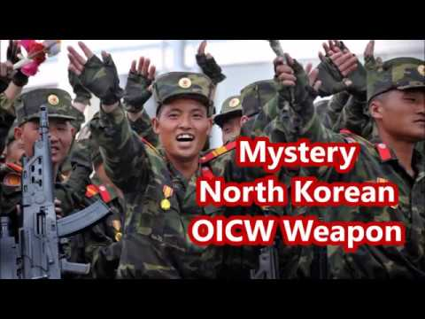 New Mystery North Korean OICW Weapon