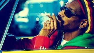 Snoop Lion  ......  Smoke The Weed