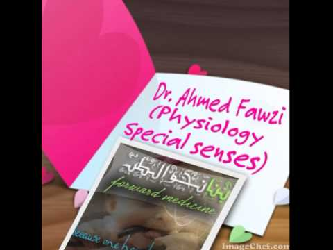 Dr. Ahmed Fawzy  Special senses revision