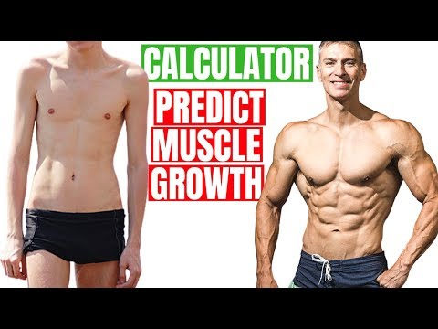How Much Muscle Can You Build